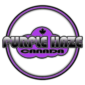 purple-haze-logo